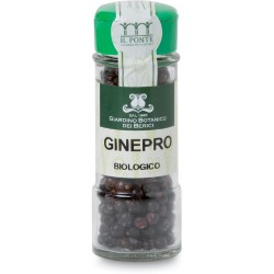 6 x Ginepro in bacche